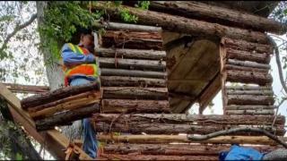 [LA] Police Find Man Living in Tree House in Pomona