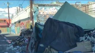 [LA] Rotting Trash Fuels Health Concerns in Los Angeles