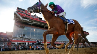 Triple Crown Killers: Top Belmont Stakes Contenders