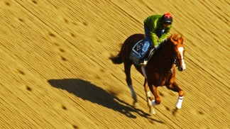 Race to the Triple Crown: The Drought Continues
