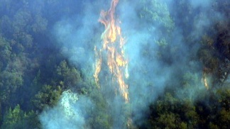 Lookout Fire Burns in Santa Barbara's Painted Cave Area