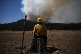 Rim Fire Rages in Yosemite Park