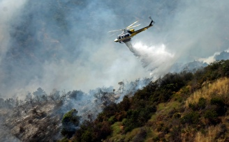 Brush Fire in Brentwood Sparked by Weed Whacker