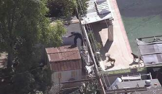 Chase Suspect Arrested After Roof-to-Roof Getaway