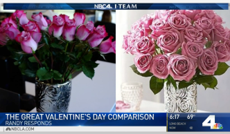 We Put Valentine's Day Flower Deliveries to the Test