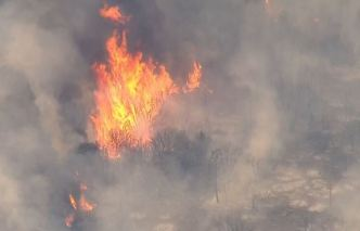 Ojai Wildfire Burns Hundreds of Acres