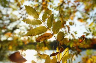 Forecasters: First Week of Fall Will Be 'Roller Coaster Ride'
