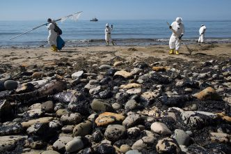 Was the Santa Barbara Oil Spill a Crime?