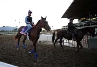 Sandy Scrambles Breeders' Cup Plans