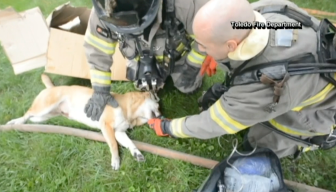 Ohio Firefighters Rescue Man's Best Friend