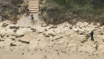 Beach Evacuated After Military Device Washes Ashore