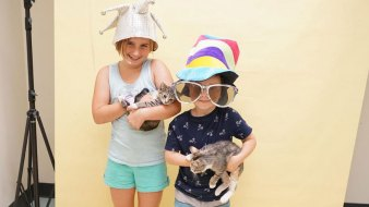45K Pets Find Homes Through Clear the Shelters