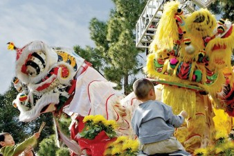 Tet Festival: Spring of Peace