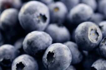 Pick-Your-Own-Blueberries Time in Somis