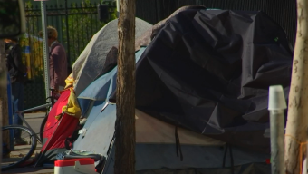 Homeless Count in LA to Get Underway, But Organization Questions the Accuracy