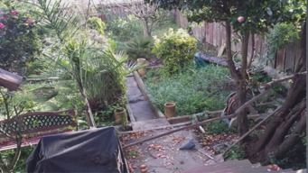 Drought Prompts Ugliest Yard Competition in SF