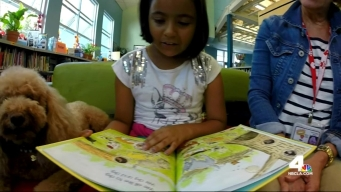 Animal Reading Program Helps Boosts Children's Self-Confidence