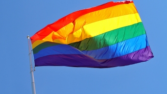 Prop 8: California Supreme Court Halts Foes of Gay Marriage