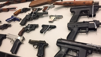 Hundreds of Weapons Purchased at Gun Buyback