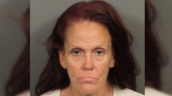 Woman Accused of Dumping Puppies Pleads Not Guilty