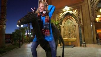 Explore The Markets of Marrakech