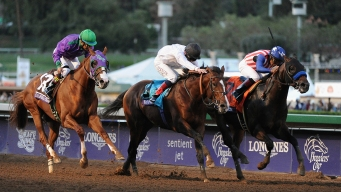 Bayern Wins Breeders' Cup Classic; Chrome Takes Third