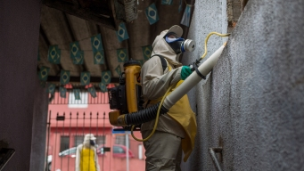 Zika Has Been in Brazil Longer Than Anyone Thought: Study