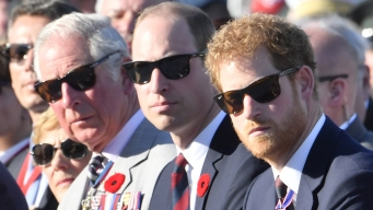 Popular Princes Harry, William Overshadow Their Father