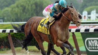 Orb, Oxbow Face Off in Triple Crown Finale