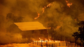 Nearly 60 Large Wildfires Are Burning in the Western U.S.