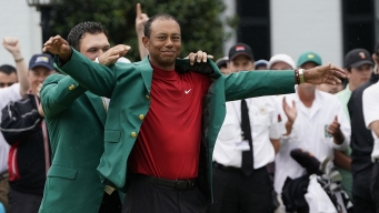 Tiger's Journey: 11 Years That Felt Like Several Lifetimes