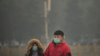 9 Out of 10 People Breathe Polluted Air: WHO
