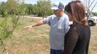Almond Farmers are Stigmatized as CA Drought Continues