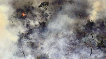 G-7 Leaders Vow to Help Brazil Fight Fires, Repair Damage