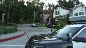 One Shot in Beverly Crest Home Invasion