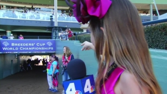 The Official Kid Reporter of Breeders' Cup
