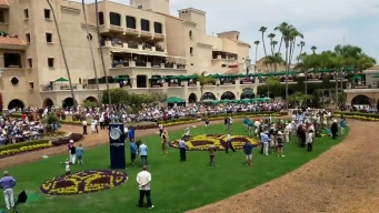 Time-lapse: Del Mar Racetrack Paddock