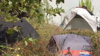 Cabin Community to be Built for the Homeless in Oakland