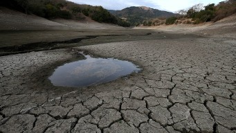 Federal Government Offers $50M for Drought Relief