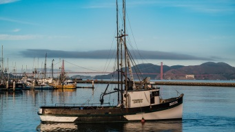 US Commerce Declares Fishing Disasters for California, 6 Other States