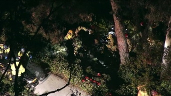 Family Hit by Car in Irvine