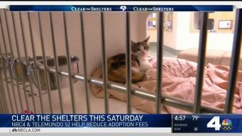 Clear the Shelters Event to Be Held Saturday