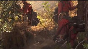 Crews Make Significant Progress on Barham Fire