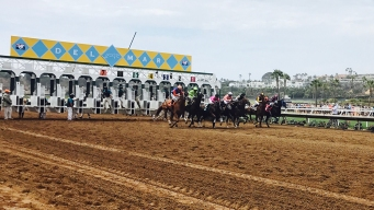 By Train, Plane or Car: How to Get to the 2019 Del Mar Races