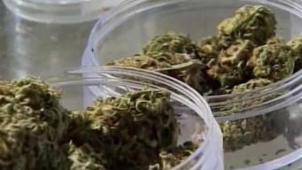 San Diego Considers Cannabis Cafes