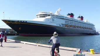 Disney Cruise Employee Heads to Prison for Embezzling