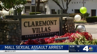Disneyland Employee Accused of Child Molestation