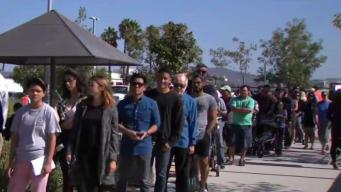 California Voter Turnout at Higher End for Midterm Elections: Expert