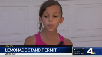 Girl's Successful Lemonade Stand Needs Permit