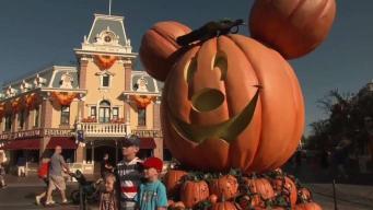 Halloween Time Happening Now at the Disneyland Resort